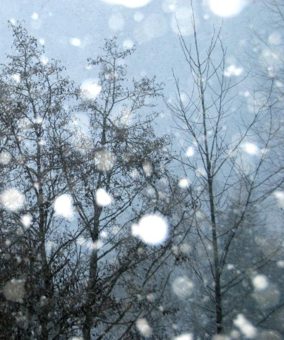 snow falling whistler
