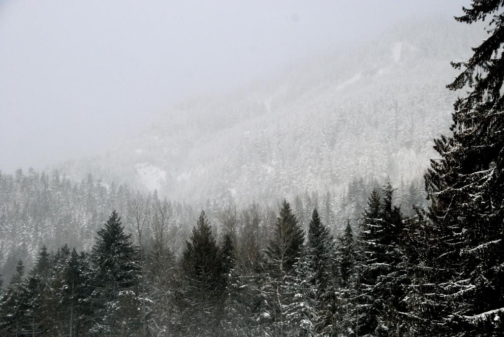 sea to sky highway, whistler, winter