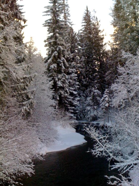winter, whistler, photography