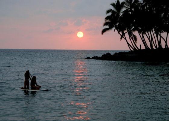 hawaii, paddle board,