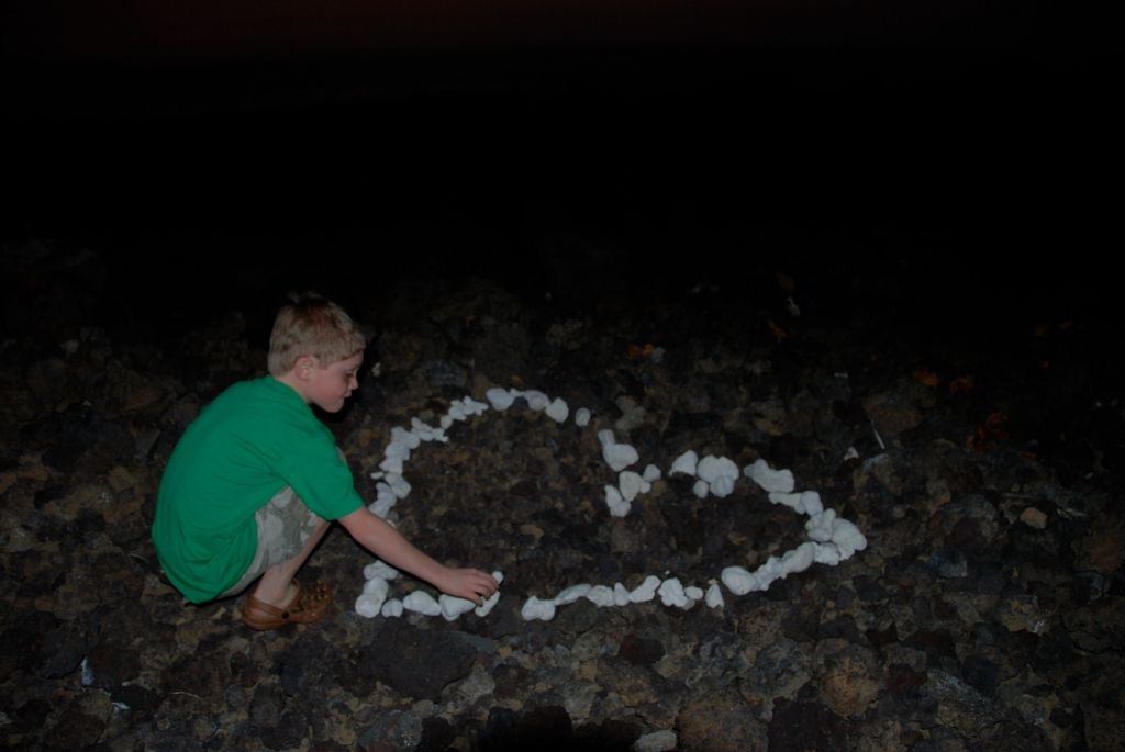 Big Island, lava, coral,photography