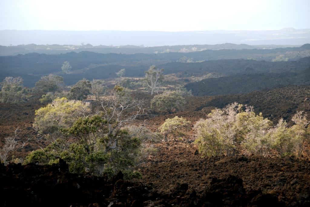 Big island, hawaii, lava rock, photography