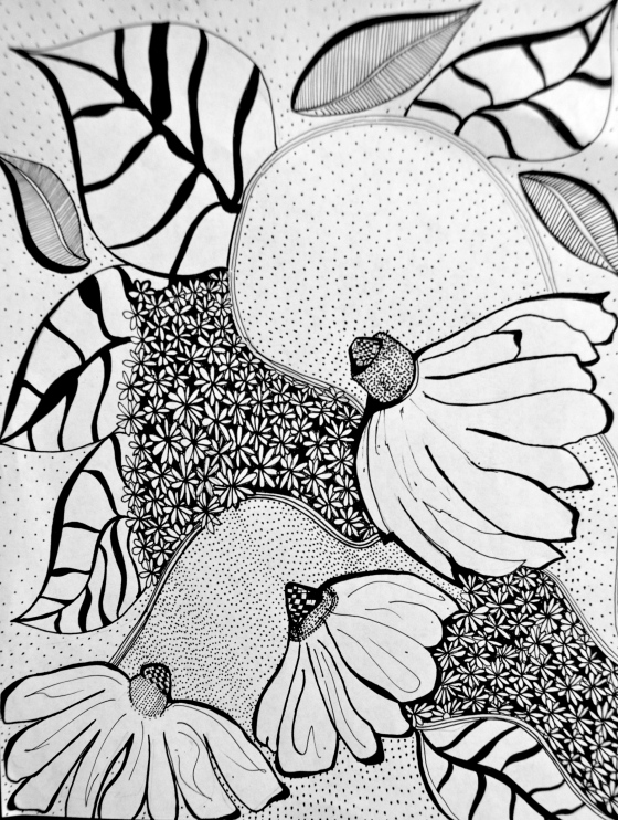 daisy, sketch, doodle, illustration