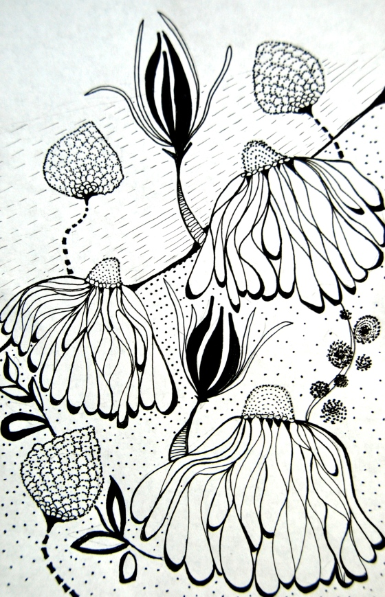 flower sketch, illustration, surface pattern design