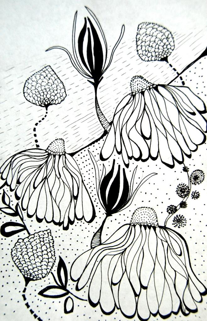 flower sketch, illustration, surface pattern design
