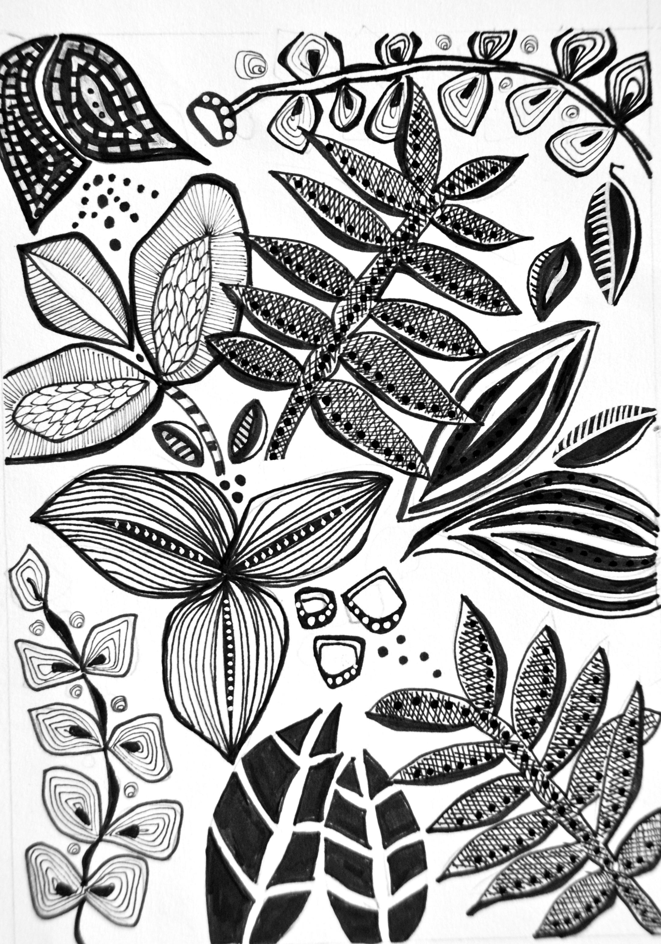 Hand Drawn Leaf Motifs