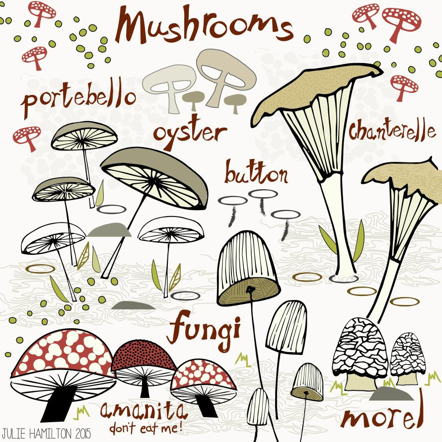 Mushrooms - Julie Hamilton Creative {artistically afflicted blog}