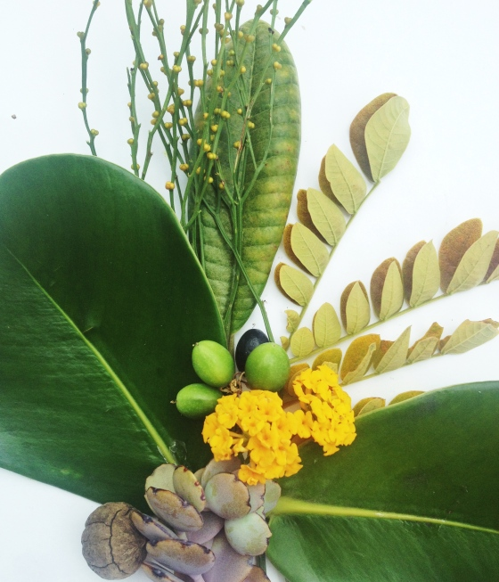 Tropical Foliage ~ Julie Hamilton Designs  {artistically afflicted blog}