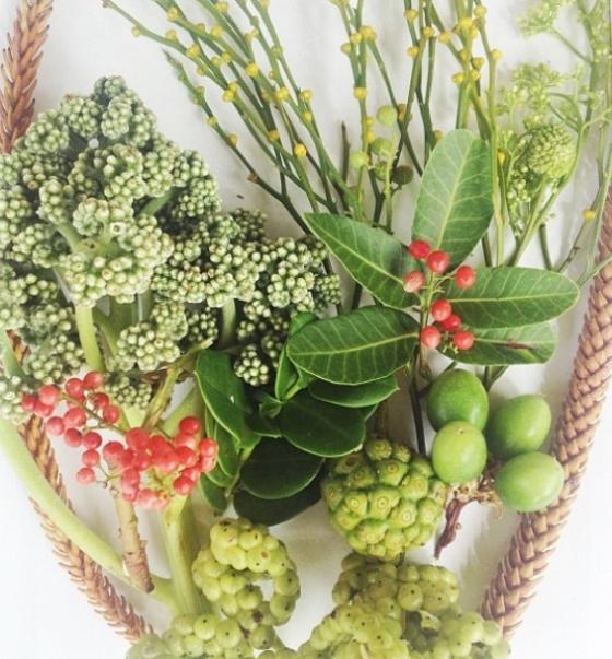 Floral -  Julie Hamilton designs {artistically afflicted blog}