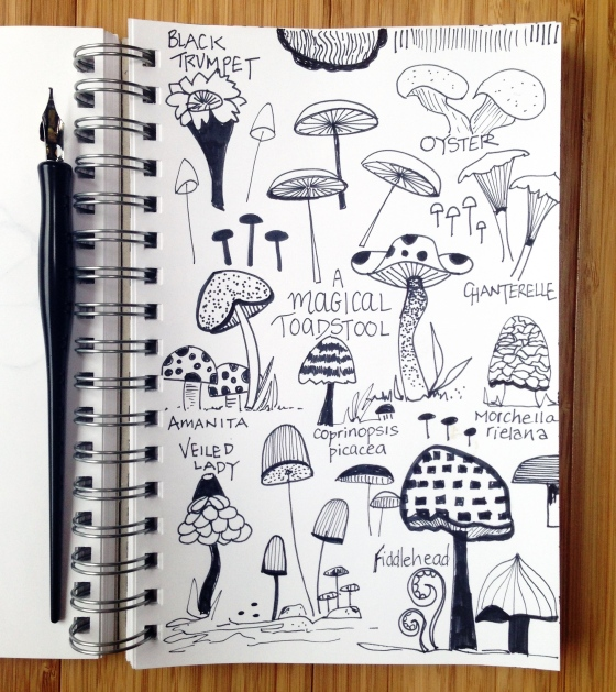 Mushroom Sketch ~ julie hamilton designs {artistically afflicted blog}