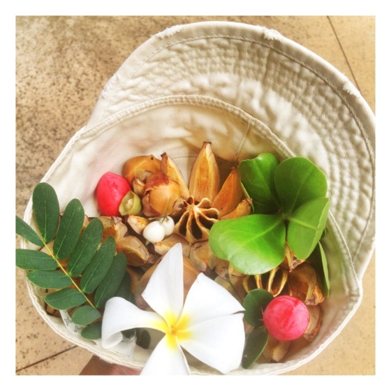 Big Island finds ~ Julie Hamilton Designs {artistically afflicted blog} #florafoliage